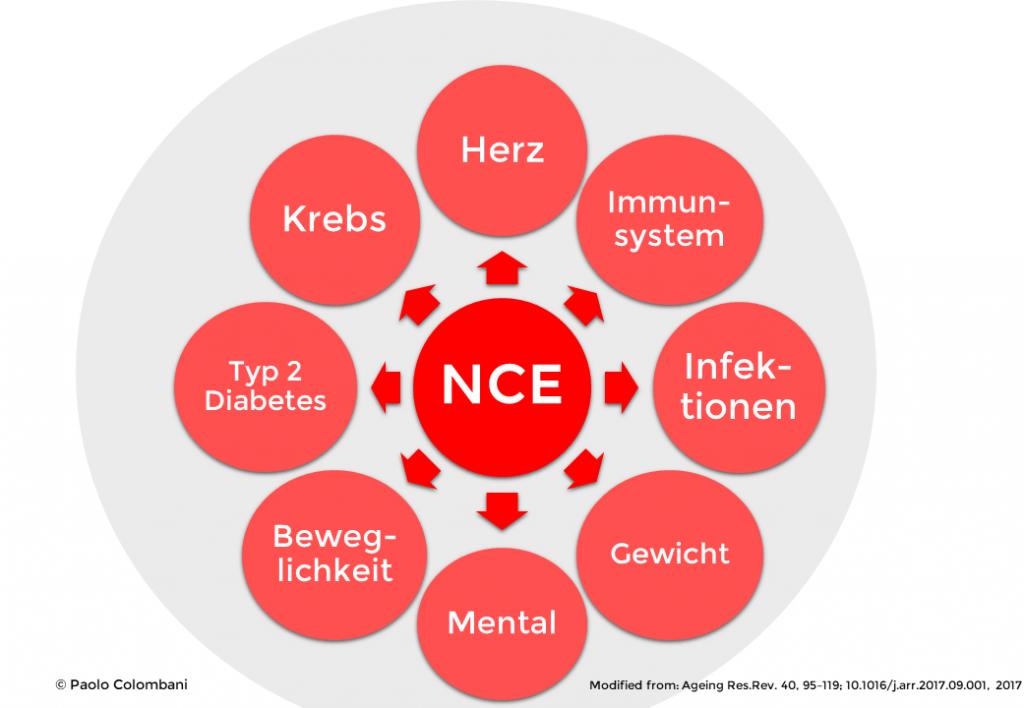 Folgen der NCE