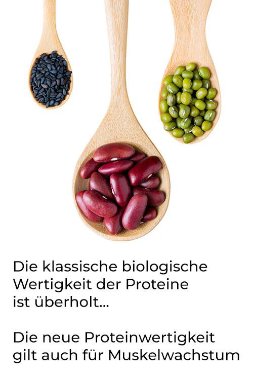 Proteinwertigkeit